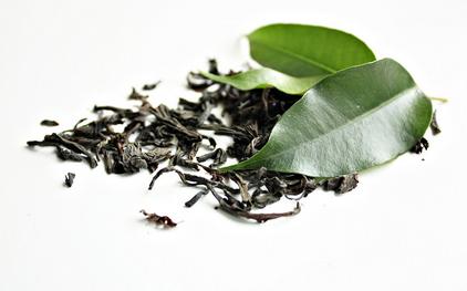 how green tea is made portland oregon